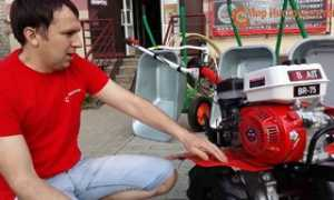 Мотоблок Лифан: какую технику получает потребитель и сможет ли починить самостоятельно