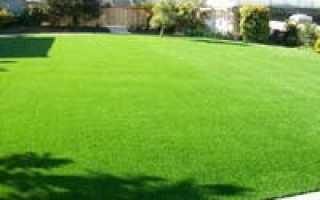 С газонокосилкой «Alpina» красивый газон это реальность!