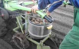 Картофелекопалка для мотоблока: собираем урожай легко и просто