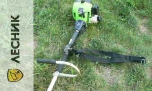 Триммер «Лесник» призван навести порядок на любом газоне