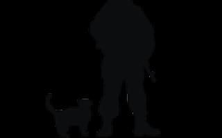 Мотобур «Союз»: надежность, простота и удобство