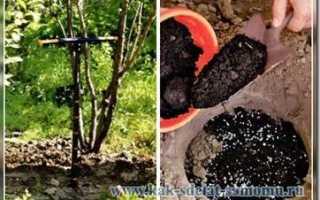 Незаменимый помощник на приусадебном участке – это ручной бур садовый земляной