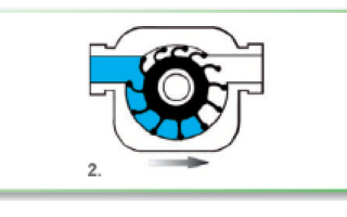 Самовсасывающие насосы: назначение, устройство и обзор наиболее популярных модификаций